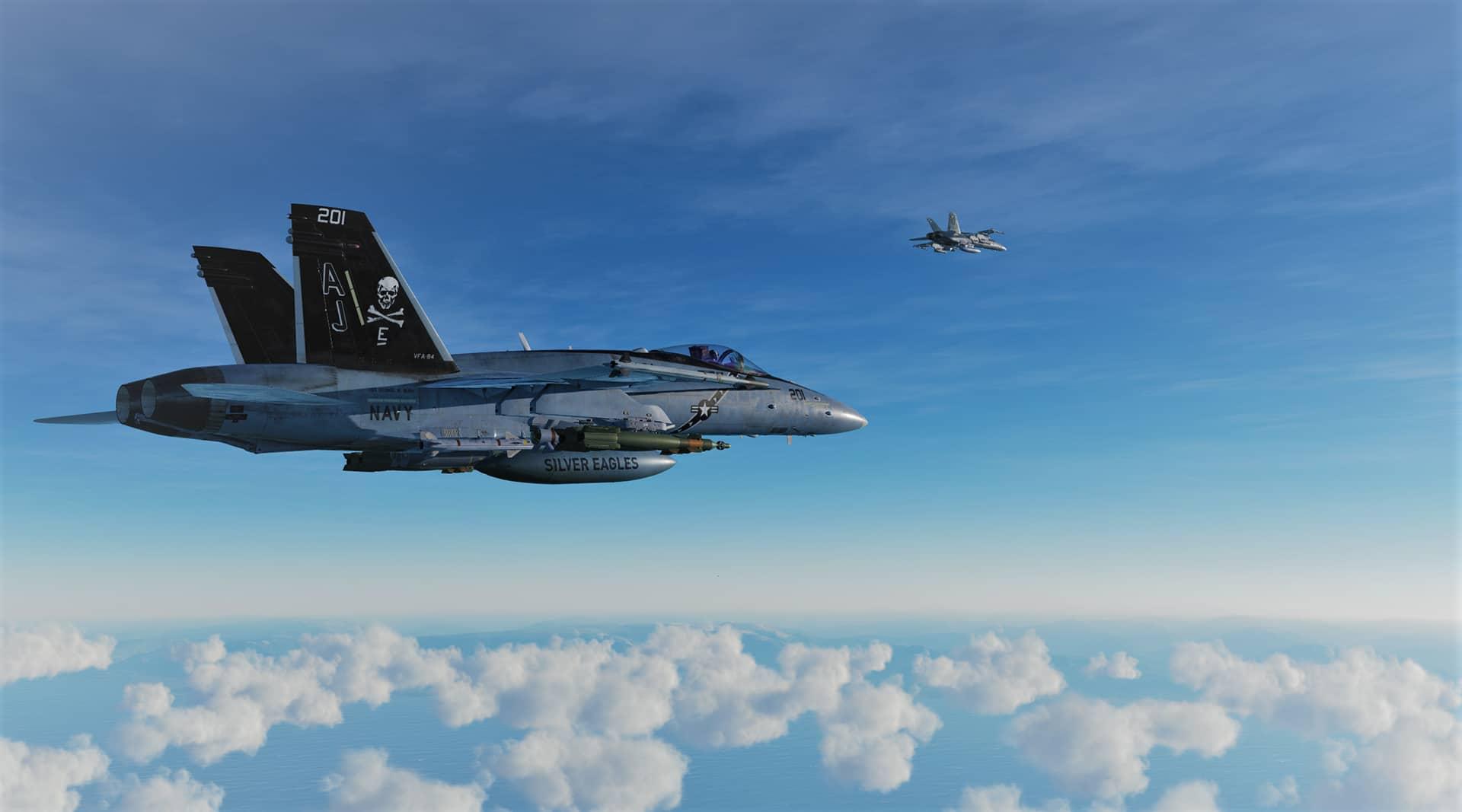 DCS F-18