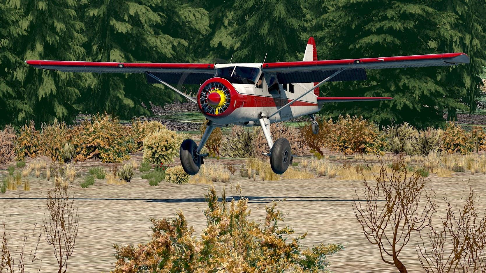 DHC2_Beaver - 2020-11-19 14.45.32